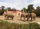 Miejskie Ogrody Zoologiczne