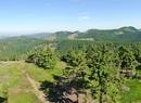 Góry Suche w Czechach