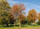 Pierwsze dni jesieni