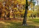 Jesień poza miastem